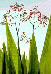 springhead-monbretia