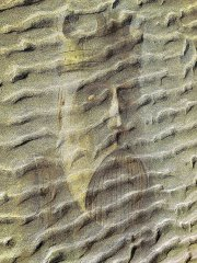 uig-chessman-king-beneath-the-sands_2